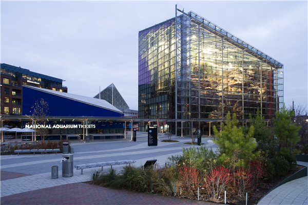 2.Building.Exterior.jpg