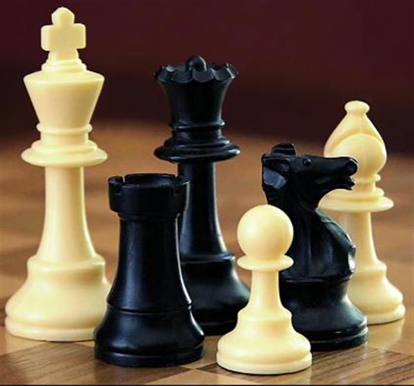 2015 chess image.JPG