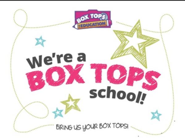 boxtopschool.png