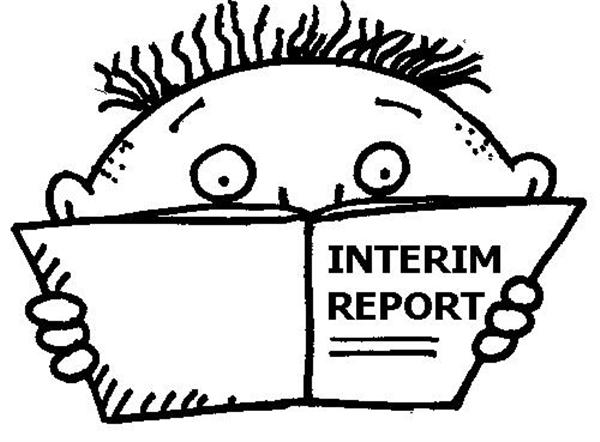 InterimReport.JPG