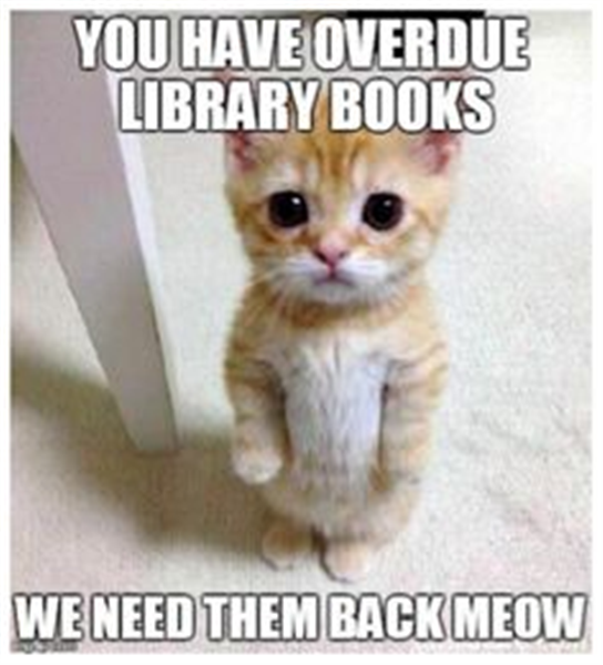 funny-library-quotes-library-memes.jpg