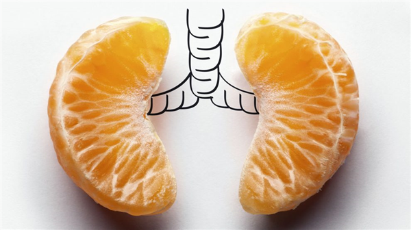 foods-that-promote-lung-health.jpg