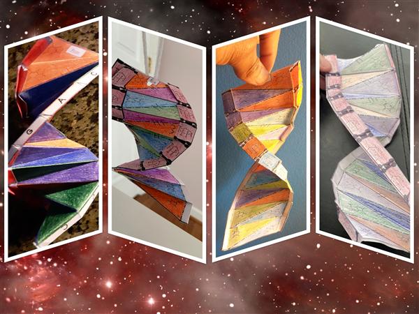 DNA (1).jpg
