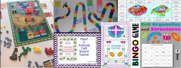 Board 1.jpg