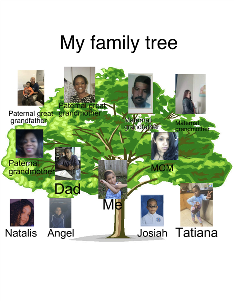 Jaiden Powell Family Tree.png