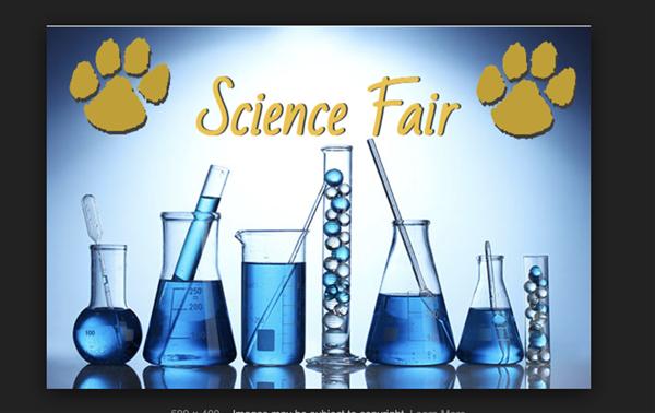 Science Fair 1.png